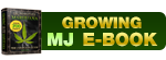 Growing Marijuana Ebook