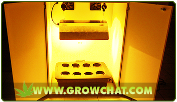 Grow Boxes For A Perfect Marijuana Indoor Growing Environment