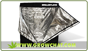 Marijuana Grow Tents As Best Environment For Cannabis Plants