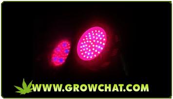 Use of UFO Grow Light when Growing Marijuana Indoors